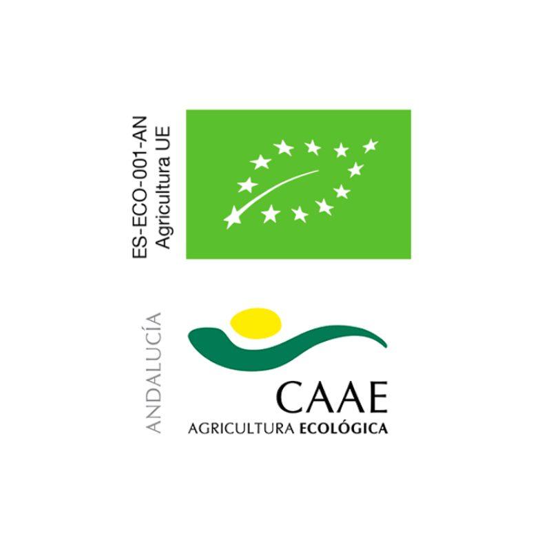 loga certyfikaty CAAE